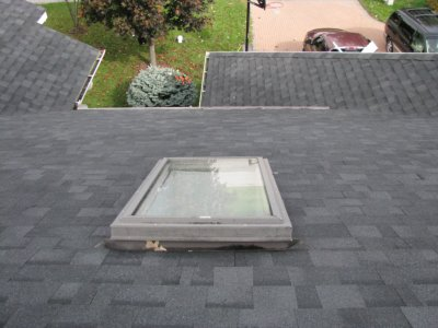 services skylight